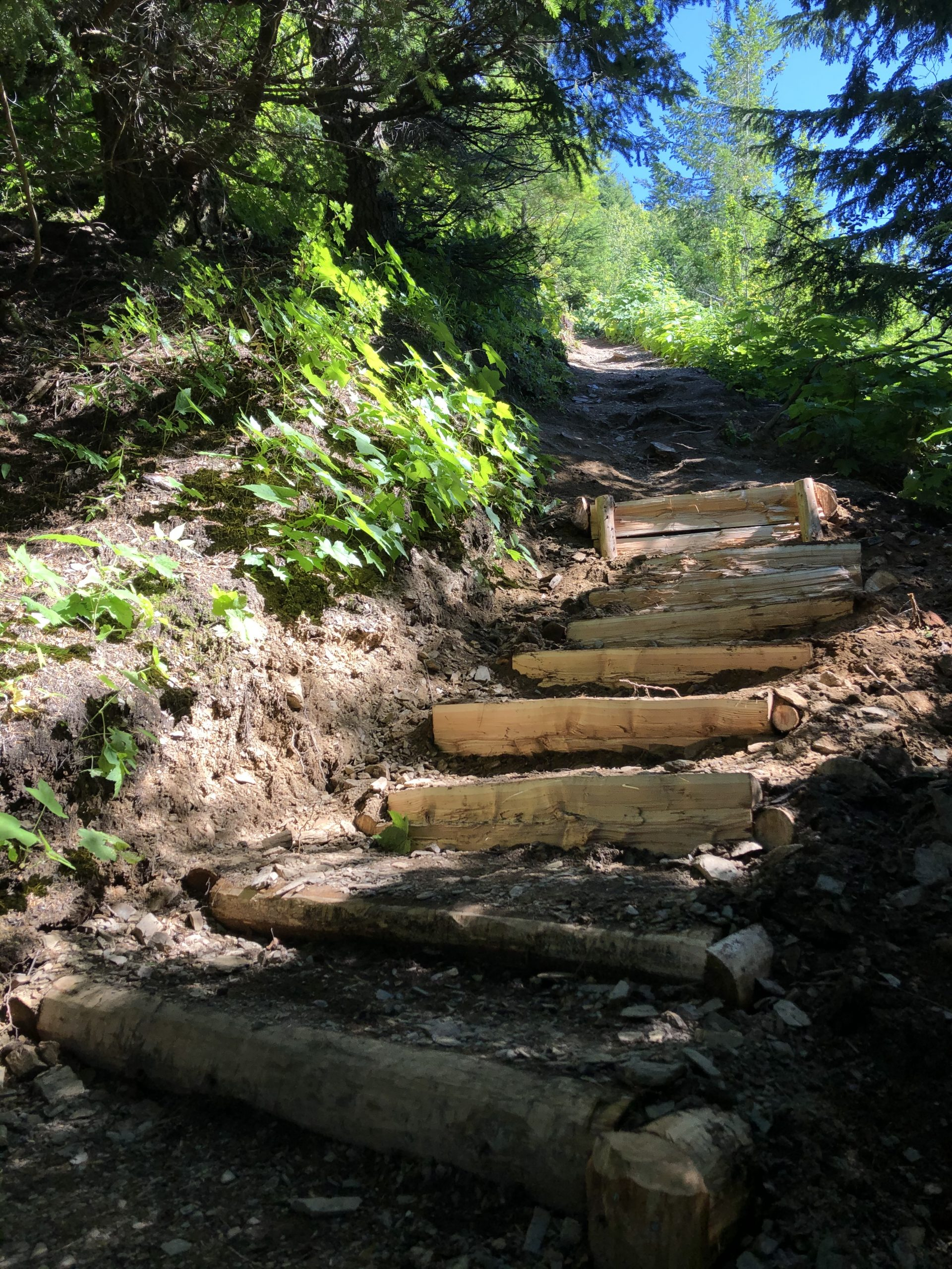 Wooden stairs on a steep hiking trail