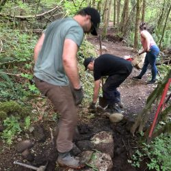 Volunteers using rock and dirt to repair a trail in the forest