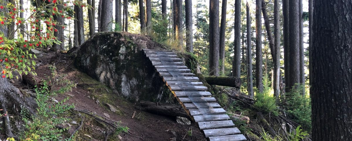 A mountain bike feature on a trail where a large boulder leads onto a wooden ramp.