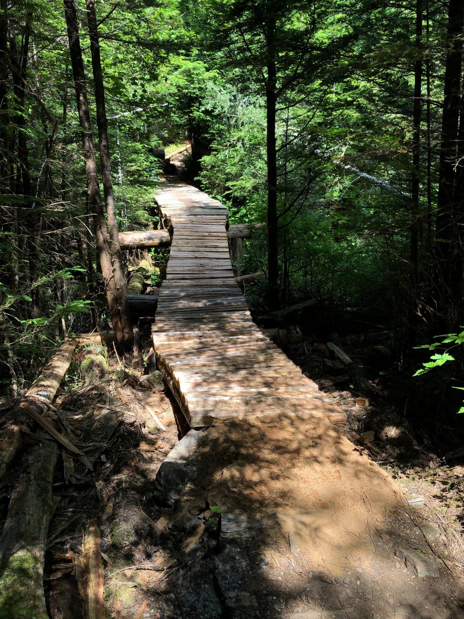 The repaired wooden bridge with fresh cedar decking