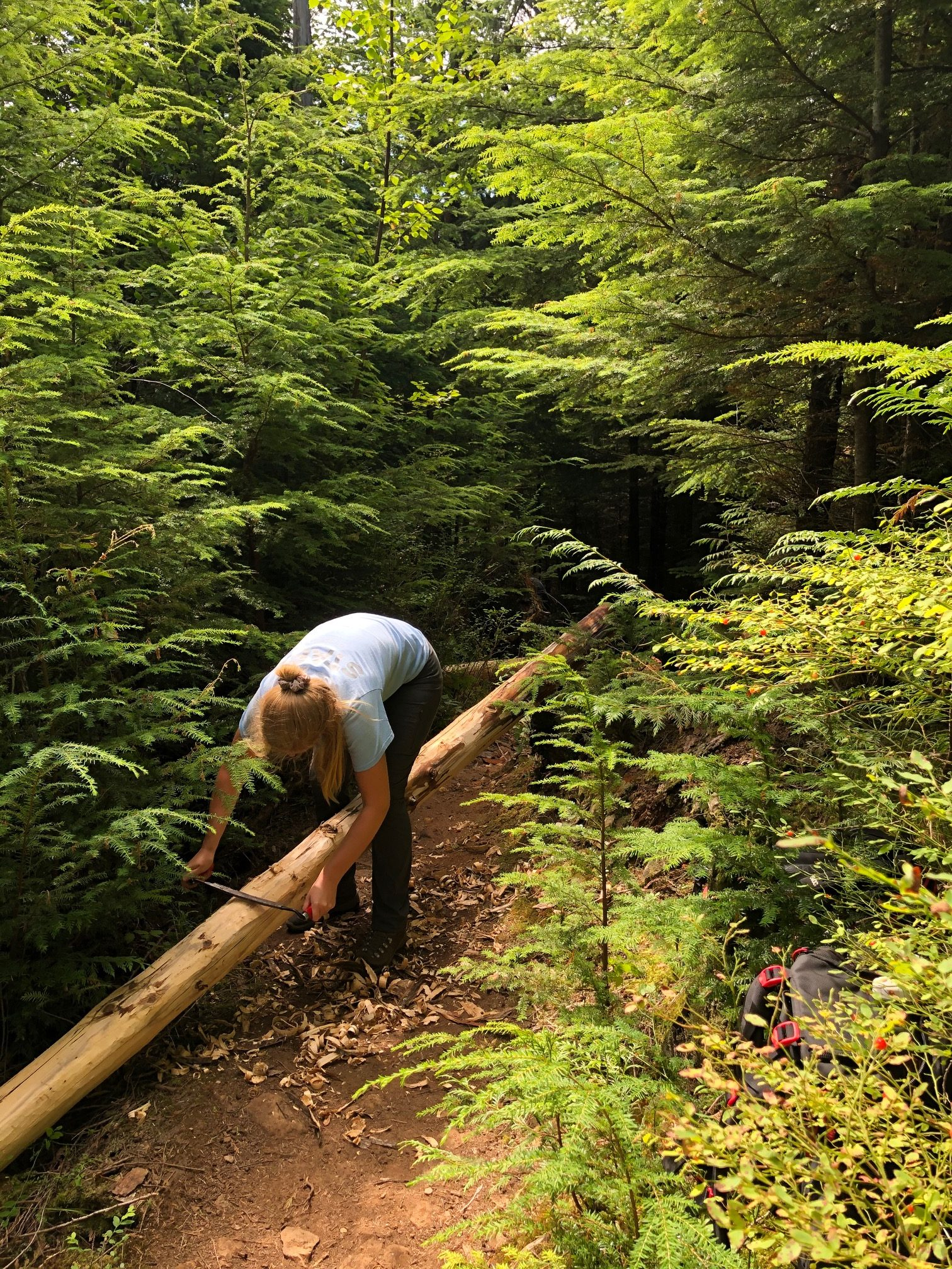 A trail worker peeling bark of a support for a bridge repair