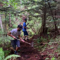 Two people in the forest building a new section of trail