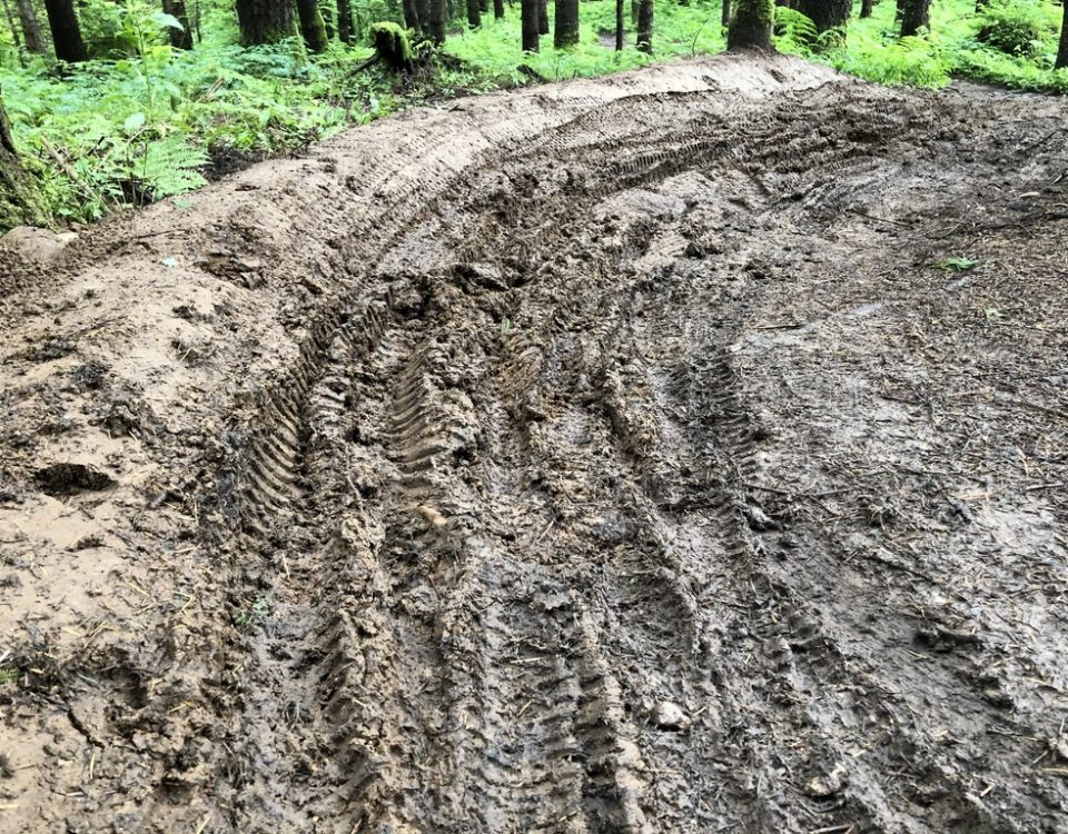 A close up of the dirt surface of a trail in the forest showing tire tracks creating ruts through the soft mud