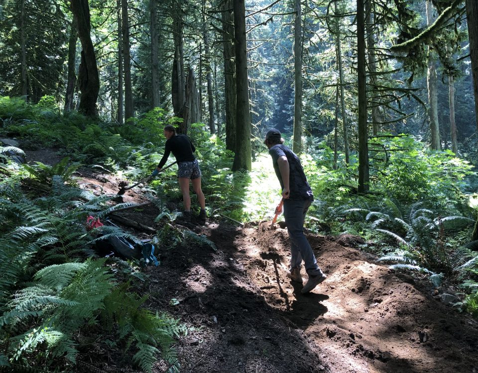 Two trail workers shaping a berm on a forested trail