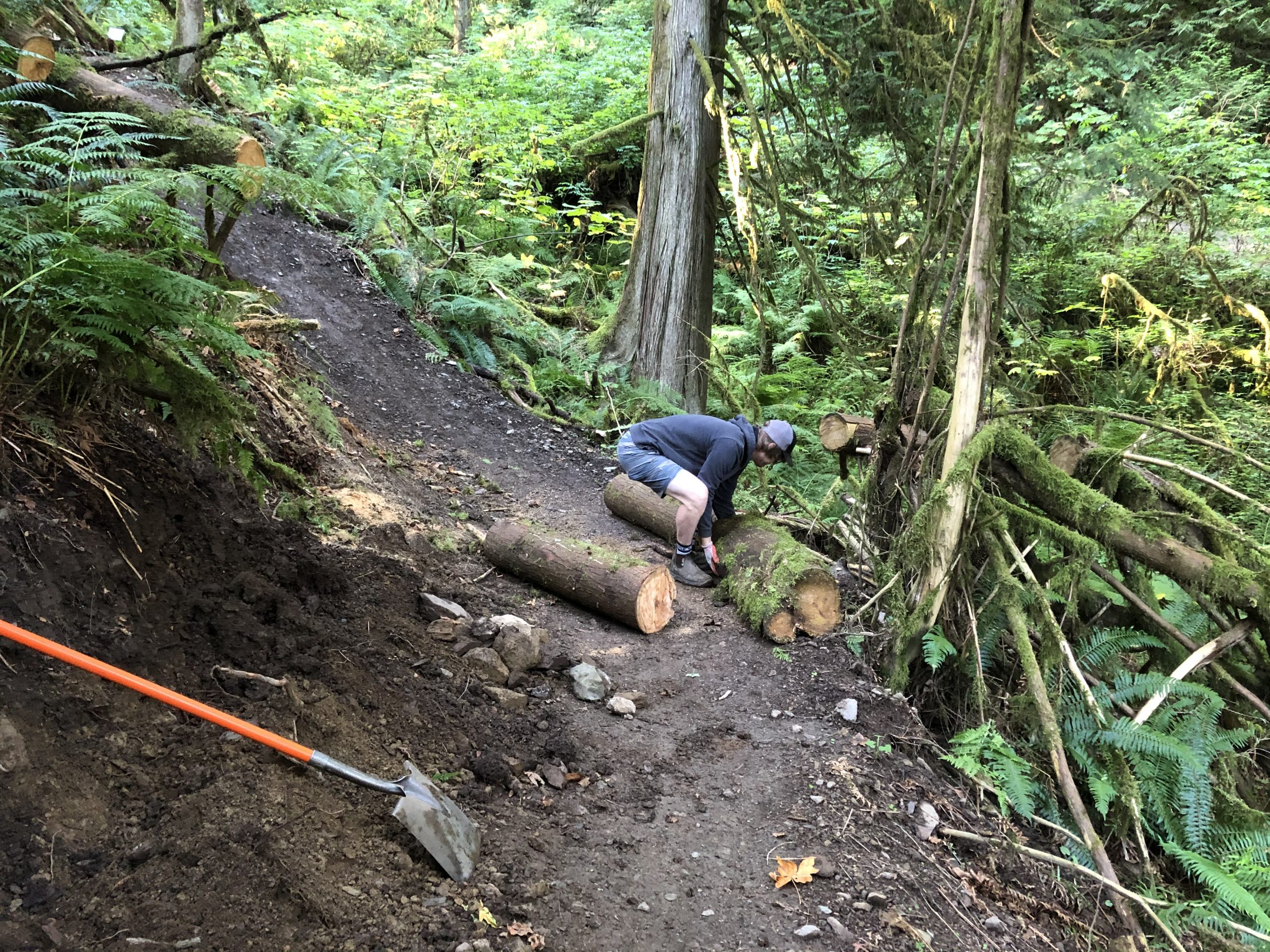An off camber corner on a forested trail that needs a berm built